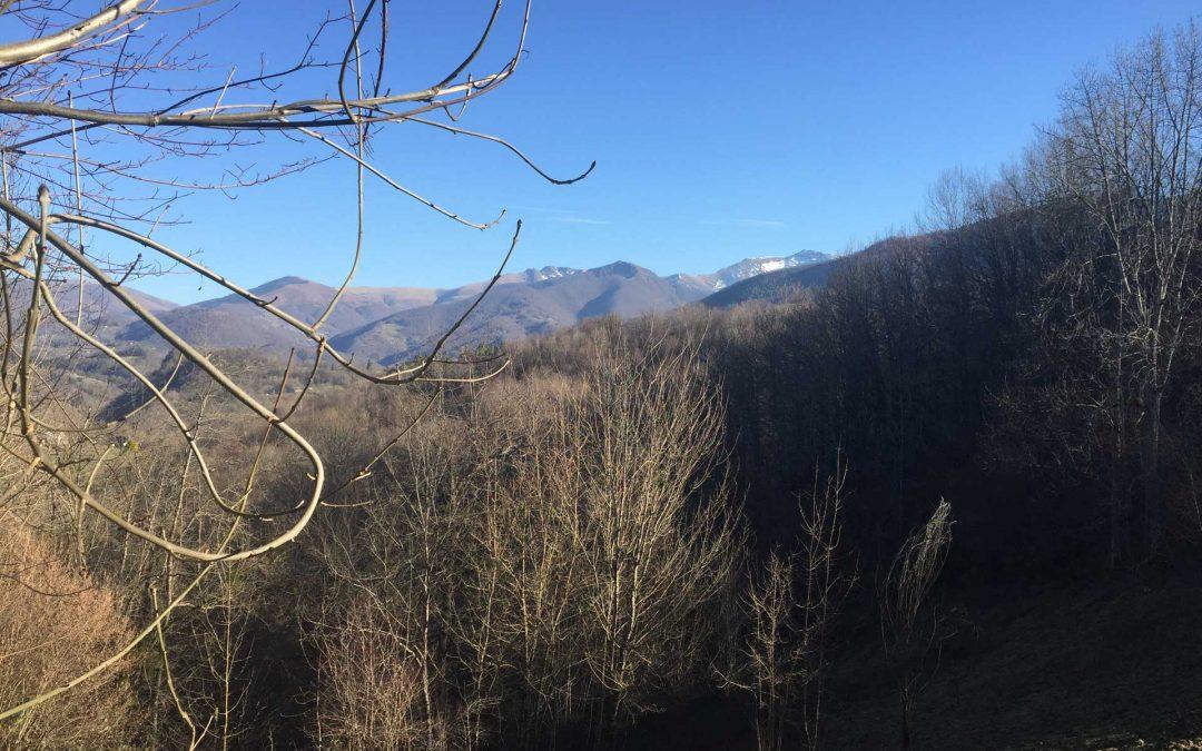 Terrain en Ariège